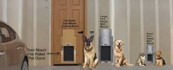 install a pet door dog door or cat door