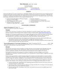 Bi Developer Resume Resume Templates