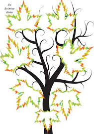 Drawing A Family Tree Template Family Tree Template For Kids 15 Designs Showing 3 4