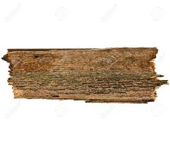 Old wood board Damaged Old Wood Board Plank Surface Texture Isolated On White Stock Photo 29425762 123rfcom Old Wood Board Plank Surface Texture Isolated On White Stock Photo