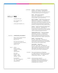 Resume Inspiration Resume For Your Job Application