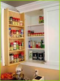 elegant kitchen cabinet door storage bins cabinets design wood ideas