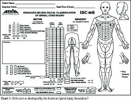 Spinal Cord Injury Chart Jpma Journal Of Pakistan Medical Association