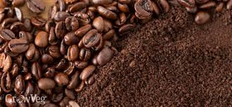 coffee beans. Perfect Coffee With Coffee Beans