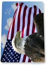 metal patriotic eagle wall art