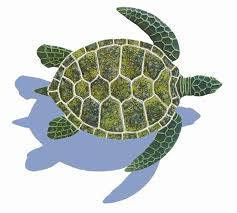 Turtle Pattern Extraordinary Ceramic Shadowed Green Sea Turtle Small Mosaic