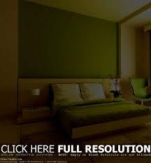 Lime Green Bedroom Furniture Bathroom Outstanding Green Bedrooms Light Brown And Lime Bedroom