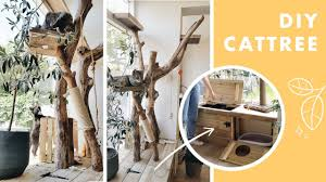 I built a DIY <b>cat tree</b> using real branches (it has a built in litter box ...