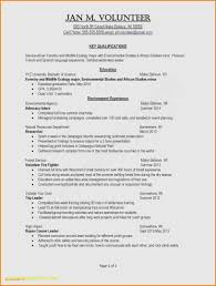 One Page Professional Resume Examples Luxury Photos Sample Cv