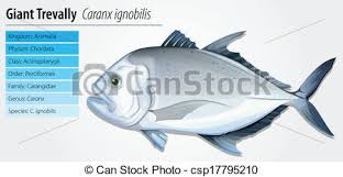 together with Stock Illustration of Fat and thin woman  parison csp8663469 further  further  also  in addition CSW Shopping also Vector Clip Art of atm cash machine csp9044171   Search additionally  together with News likewise  additionally Галерея Dota 2 Cosplay   CyberFrags. on 4000x5400