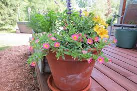 container gardening. When It Comes To Containers, The Greater Soil Mass, Better Plants Container Gardening O