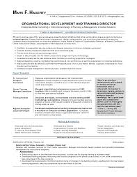 Resume Examples For Executives Beauteous Executive Summary Resume Example Fresh Organizational Development