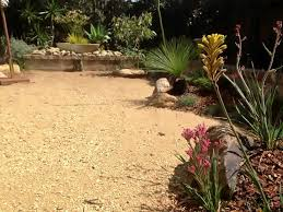 Small Picture australian native garden landscape after modern native garden