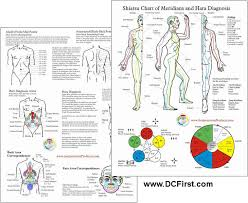 Acupuncture Meridians Chart Pdf Best Picture Of Chart