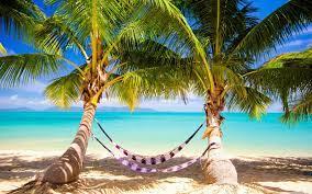 Tropical Beach Hammock Ultra HD Desktop ...