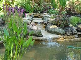 Small Picture Small Garden Pond Design Pictures Best Garden Reference
