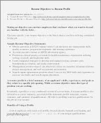 Resume Summary Statement Examples Simple Resume Summary Statement Examples Software Engineer Beautiful Good