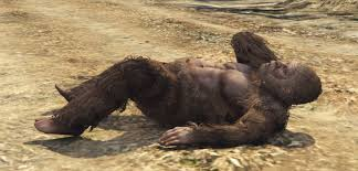 Image result for big foot