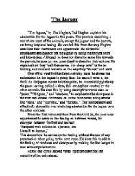 english 1 essay kite flying