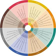 How To Use A Whisky Taste Chart To Improve Your Whisky Tasting