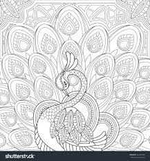 Small Picture Peacock Coloring Pages Ppinewsco