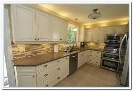Kitchen Cabinet Colors Ideas Best Decorating Design