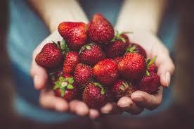 toxic fruit