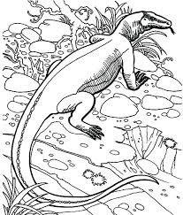 Grass Coloring Pages Dragon Coloring Pages Dragon Dragon Hiding