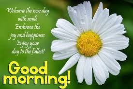 Sms Good Morning Quotes Best of Good Morning SMS High Defination Wallpapers Free Background