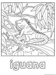 Small Picture Animal Alphabet Coloring Pages Letters G L 1111