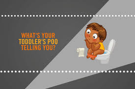 what s your toddler s poo telling you