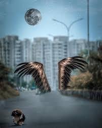vijay mahar wing cb picsart background