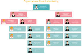 example of org functional org chart definition pons and cons org charting