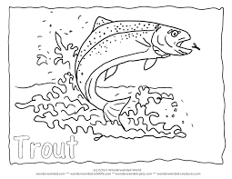 Small Picture Angel Fish Coloring Pages Coloring Coloring Pages