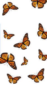 Sticker blue monarch butterfly wings purple monarch butterfly drawing monarch butterfly swarm white butterfly aesthetic monarch butterfly on sunflower real monarch blue butterfly beautiful blue butterfly butterfly aesthetic room monarch butterfly on flower butterfly soft aesthetic. Monarch Butterfly Aesthetic Wallpapers Wallpaper Cave
