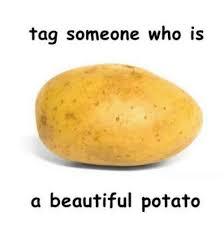 beautiful potato. Brilliant Beautiful Beautiful Memes And Potato Tag Someone Who Is A Beautiful Potato To Beautiful Potato E