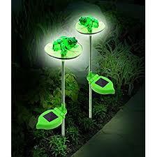Solar Frog Light Sunny Solar Light GardenFrog Solar Light Solar Solar Frog Lights
