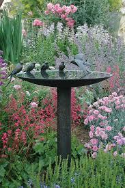 Bird Bath Garden Design Garden Feature Birds Gathering Around Their Bath Almost
