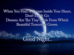 Inspirational Good Night Quotes Delectable Inspirational Good Night Messages Wishes Quotes WishesMsg