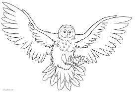 Owl Coloring Page Printable Owl Coloring Pages Free Owl Coloring