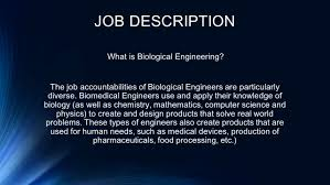 Biomedical Engineering Job Description BIOLOGICAL ENGINEERING BY MIA PATLÁN JOB DESCRIPTION What Is 2