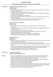 Developer Lead Resume Samples Velvet Jobs
