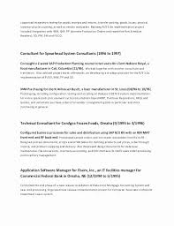Social Work Resume Examples Extraordinay It Professional Resume