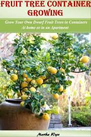 fruit tree container growing grow your