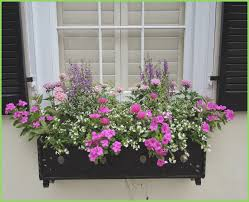 Decorative Window Boxes Decorative Outdoor Flower Window Planter Box webbirdco 29