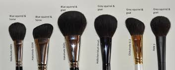 diffe types of makeup brushes photo 1