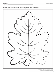 Step 3, press ctrl+alt+t to get an option bar as shown in the following picture. Completing The Picture Leaf Preschool Basic Skills Drawing Printable Skills Sheets