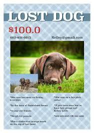 Lost Pet Flyer Maker Flyer Templates Samples Flyer Maker Publisher Plus 15