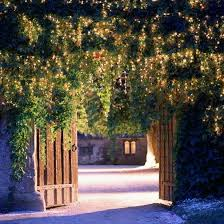 christmas outdoor lighting ideas. outdoor christmas lighting ideas d