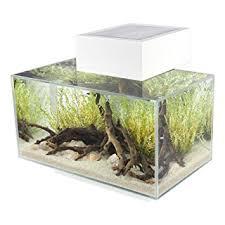 Super Cool Modern Aquarium Fine Decoration 1000 Ideas About Modern